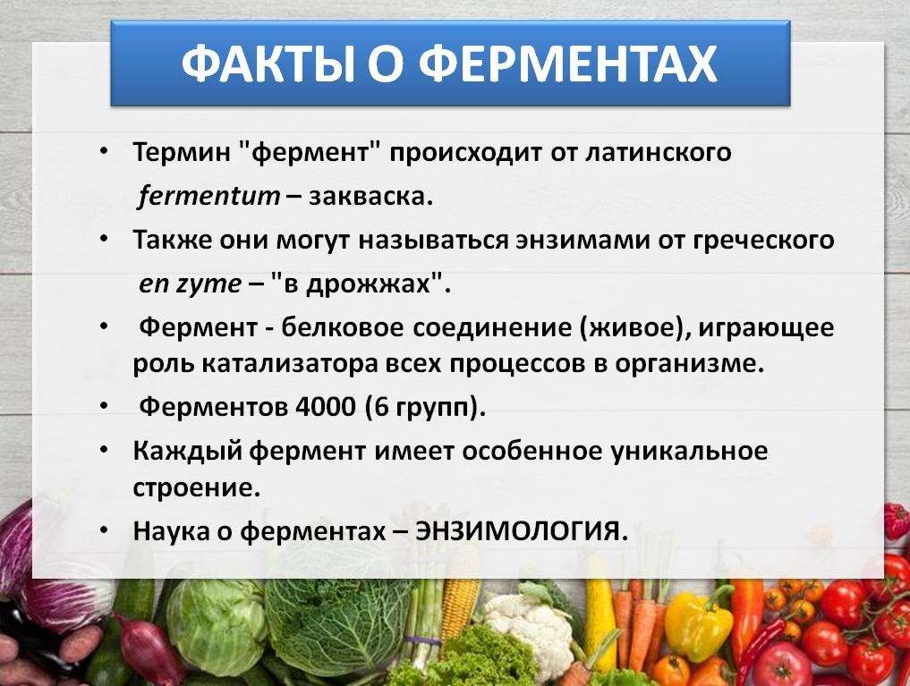Факты о ферментах