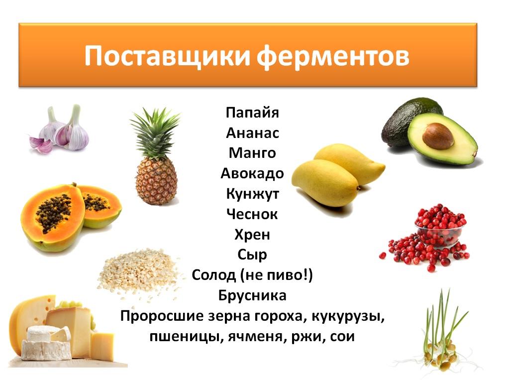 Продукты-источники ферментов